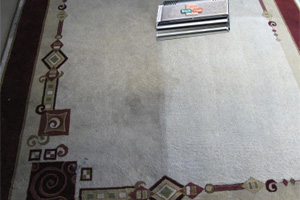 Area Rug Cleaning Services by Green Solutions