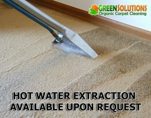 green solutions carpet cleaning salt lake city